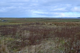 Plot at The Paddock, Mayfield, Thurso, KW14 8YN