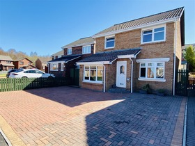 Parkneuk Street, Motherwell, ML1 1BY